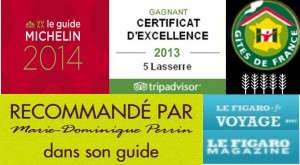 logos excellence site 2014a